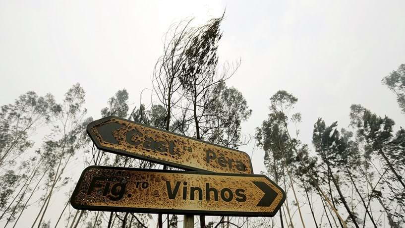 Incêndios: políticos podem vir a responder criminalmente por fogos de outubro